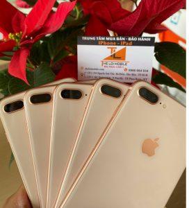 sản phẩm iphone Phan Rang tại Thế Lợi
