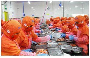việc làm công nhân Ninh Thuận