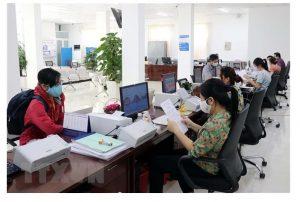 Việc làm Ninh Thuận